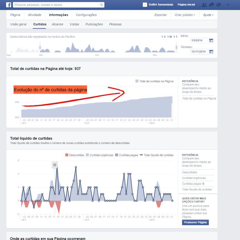 Facebook para empresas relatorios de curtidas de fan page