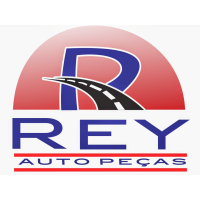 Marketing digital - workshop participante rey auto pecas