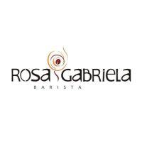 Marketing digital - workshop participante rosa gabriela barista