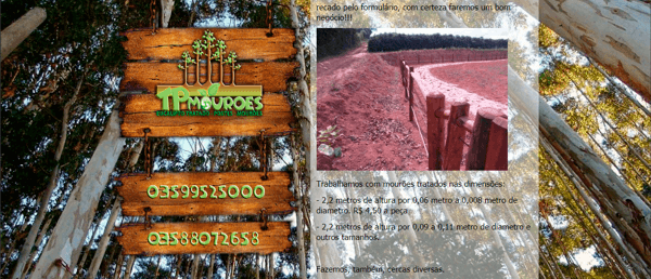 Site – TPMourões – Eucalipto tratados