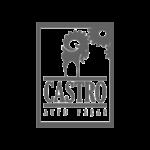 logotipo-logomarca-auto-pecas-casstro-loja-virtual-de-pneus-auto-pecas