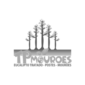 Tp Mourões – Mourões de Eucalítpto